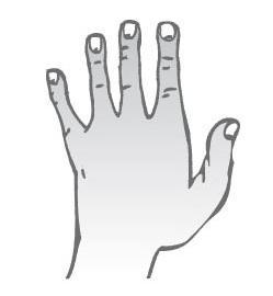 Špachtľovitá ruka