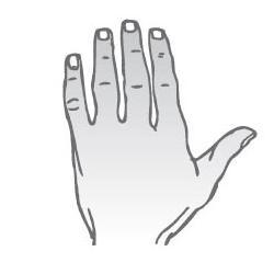 Elementárna ruka